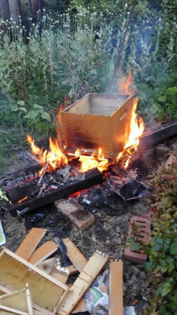 Palenie morovych vcelstiev v Dubovej. Jun 2016